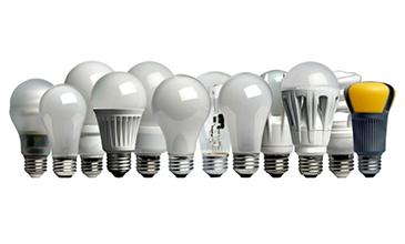 choosing the right bulbs